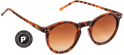 Glassy Polarized TimTim Matte Tortoise Sunglasses