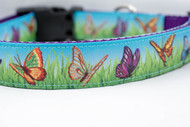 "Butterflies Dog Collar 1 or 1.5"" wide"