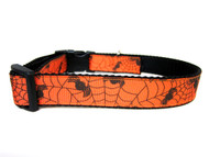 Halloween spider dog collar