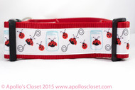 Lady bug dog collar