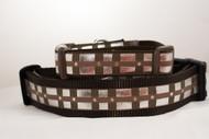 Chewy belt dog collar