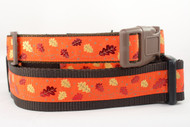 Orange Fall Dog Collars