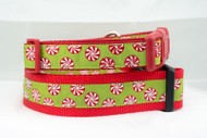 Holiday Peppermint Dog Collar