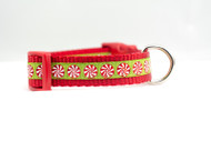 Peppermint Candy Cane Dog Collar