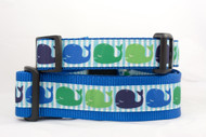 Blue whale dog collar
