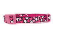 Valentine Dog Collar