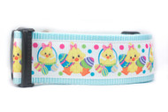 "Blue Easter Chick 2"" wide Dog Collar"