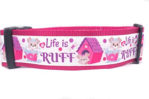 Girl dog collar