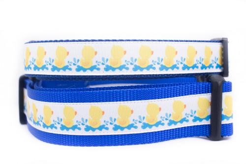 Rubber Ducky dog collar