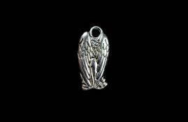 Angel Wing 27