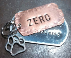 Double Dog Tag Pet Tag w/ 1 Charm