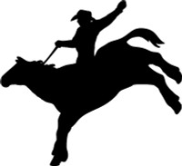 Cowboy On Wild Horse Decal