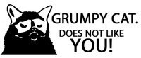 Grumpy Cat Does Not Like You Decal