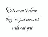 Cats Aren't Clean... (Wall Art Decal)