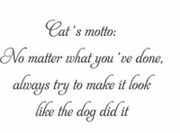 Cat's Motto... (Wall Art Decal)