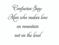 Confucius Say: Man Who Makes Love On Mountain Wall Art Decal