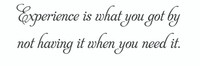 Experience Is What... (Wall Art Decal)