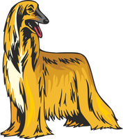 Afghan Hound Dog Sticker