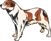 Aidi Dog Sticker