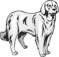 Airedale Terrier Dog Vinyl Sticker