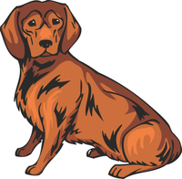 Alpine Dachsbracke Dog Sticker