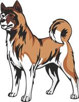 American Akita Dog Vinyl Sticker