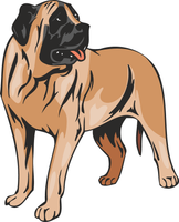 American Mastiff Dog Vinyl Sticker