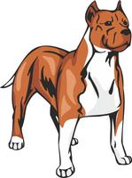 American Staffordshire Terrier Dog Vinyl Sticker