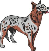 Australian Cattle Dog Vinyl Sticker