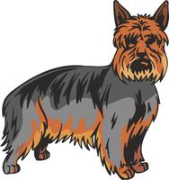 Australian Silky Terrier Dog Vinyl Sticker