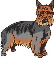 Australian Silky Terrier Dog Sticker