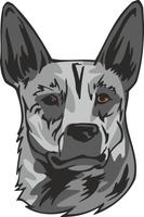 Australian Stumpy Tail Cattle Dog Vinyl Sticker