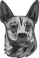 Australian Stumpy Tail Cattle Dog Sticker