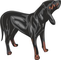 Austrian Black and Tan Hound Dog Sticker