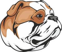 American Bulldog Dog Vinyl Sticker