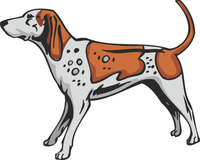 American English Coonhound Dog Sticker