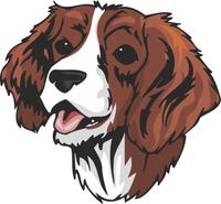 English Springer Spaniel Dog Sticker
