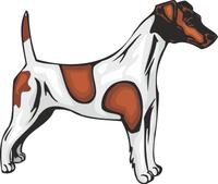 Fox Terrier Dog Vinyl Sticker