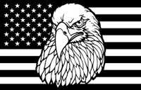 American Eagle on American Flag Decal