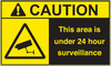 ANSI Caution This Area Is Under 24 Hour Surveillance Vinyl Sign #1