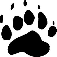 Black Bear Animal Track Decal