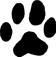 Cougar Animal Track Decal