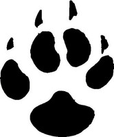 Coyote Animal Track Decal