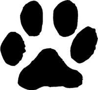 Cat Animal Track Decal