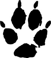 Kit Fox Animal Track Decal