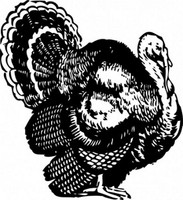Thanksgiving Day Turkey Decal