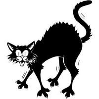 Happy Halloween Scared Cat