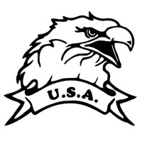 U.S.A. Bald Eagle Design