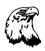 U.S.A. Bald Eagle Head Design