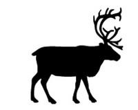Big Buck Decal #3